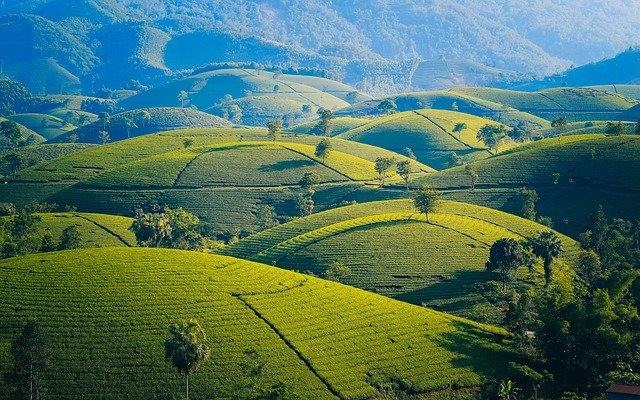 Çiftçi Pahom'un Hazin ve İbretlik Öyküsü
